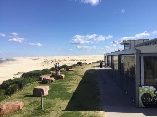 Berrubi Beach Camel Rides